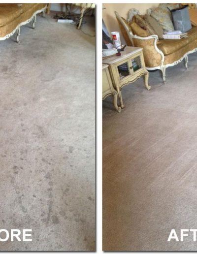 before and after carpet cleaning in omaha