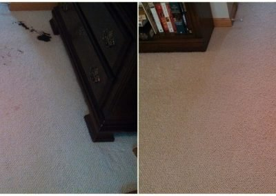 before and after stain removal in omaha