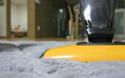 Choosing the Right Vacuum for Cleaner Carpets