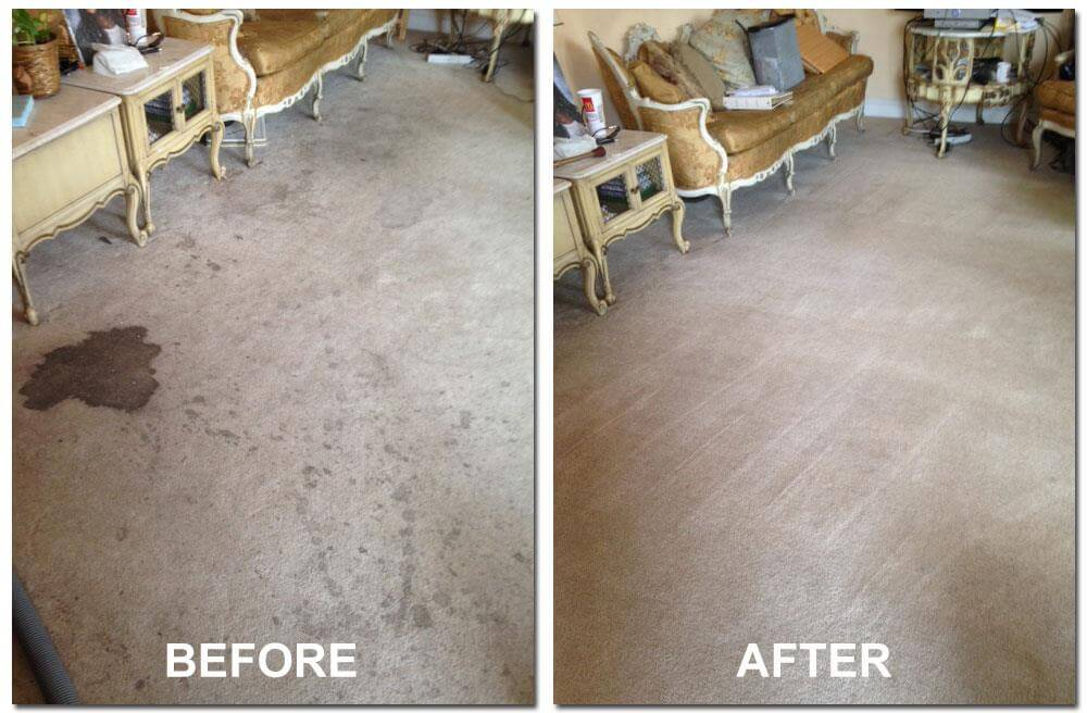 before and after carpet cleaning elkhorn ne