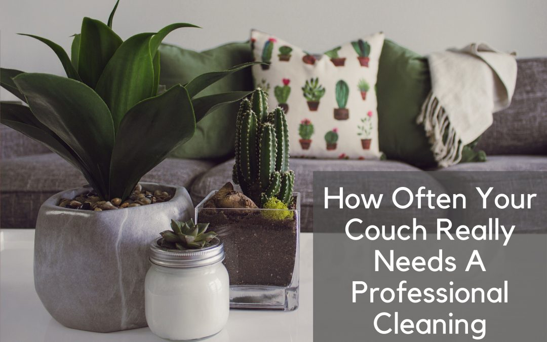 How Often Your Couch Really Needs A Professional Cleaning