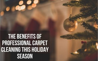 The Benefits Of Professional Carpet Cleaning This Holiday Season