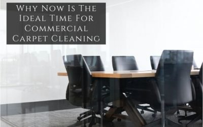 Why Now Is The Ideal Time For Commercial Carpet Cleaning