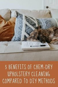 5 Benefits Of Chem-Dry Upholstery Cleaning Compared To DIY Methods