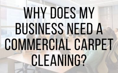 Why Does My Business Need a Commercial Carpet Cleaning?