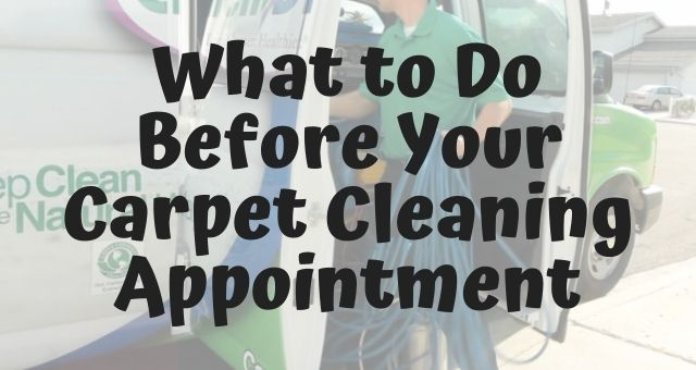 What to Do Before Your Carpet Cleaning Appointment